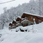 Arhavi bungalov evleri